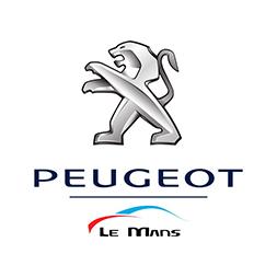 Peugeot Stefanini